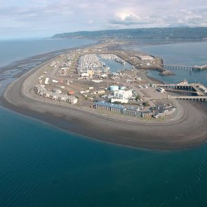 L'explosion d'un pipeline au large de l'Alaska met en danger les baleines