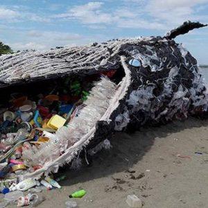 Le point de vue d'un expert en cosmétiques sur la pollution plastique