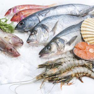 Est-ce que c'est sain de manger du poisson? Une mise à jour du groupe surpêche de TAF