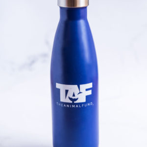 TAF Stainless Steel Water Bottle in blue