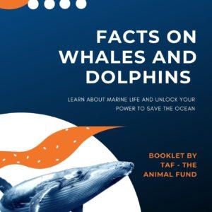 TAF Booklet